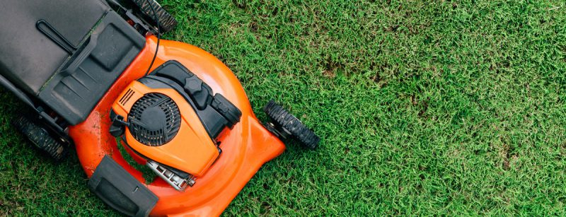 4 Steps for Choosing the Right Type of Mower